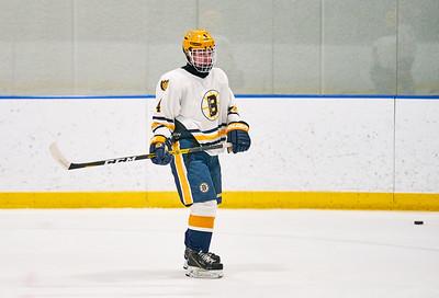 29   Breck HS Boys Hockey 1-21-2020    RobertEvansImagery com IG @RobertEvansImagery
