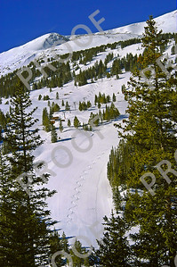 Chair 6 and solitary tracks on Peak 8 as seen from Peak 9. This was before Peak 8 was open. I hiked it, skied it, and then shot it.