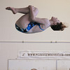 Broomfield's LeAnna Talarico makes a dive during Saturday's state 4A swim championships at Mtn. View Aquatic Center.<br /> <br /> February 13, 2010<br /> Staff photo/David R. Jennings