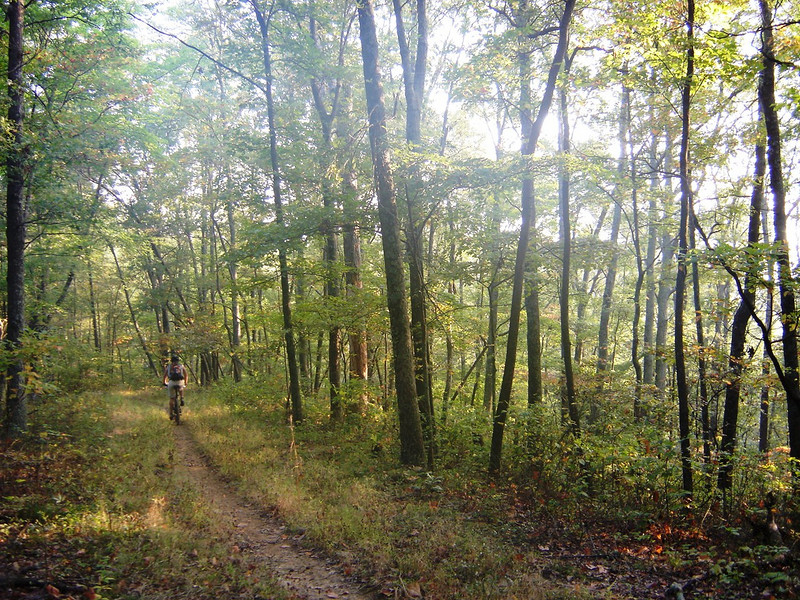 Mountain biking during sunrise on a ridgeline trail in Brown County, Indiana.