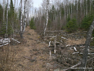 """""""The Saddle.""""   Nested between two hill tops, one being the site of the now removed Brule Lake Lookout Tower, is the a rocky trail through the saddle.   Twenty years ago all you could see on the right were rocks.  Now dead birch tree trunks are covering much of the morraine."""