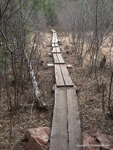 """""""Board walk 3#,"""" was rebuilt last summer by the USFS crews.  The planks are tamarack, wood used by settlers for foundations and tools because it is rot resistant and hard."""