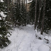 Day 2.   We venture back on the Brule Lake Trail.