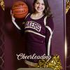 2x3 Banner Honeycomb Cheerleading