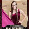 2x3 Banner Honeycomb Leah Meszaros