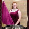 2x3 Banner Honeycomb katelyn crouch