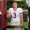2x3 Banner Honeycomb Football Logan
