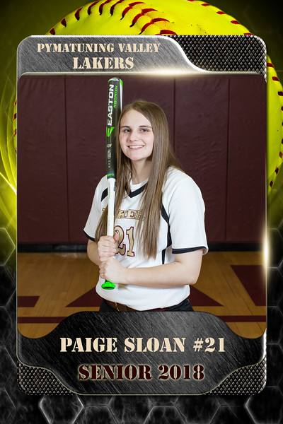 2x3 Banner Honeycomb Softball Sloan