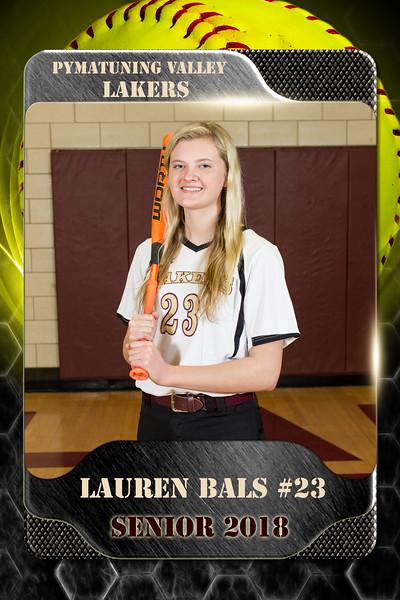 2x3 Banner Honeycomb Softball Bals