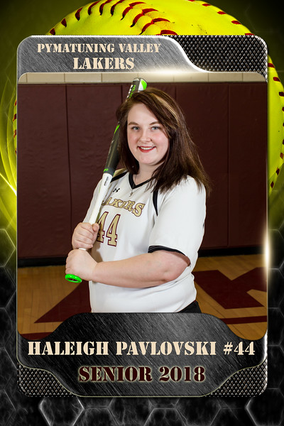2x3 Banner Honeycomb Softball Pavlovski