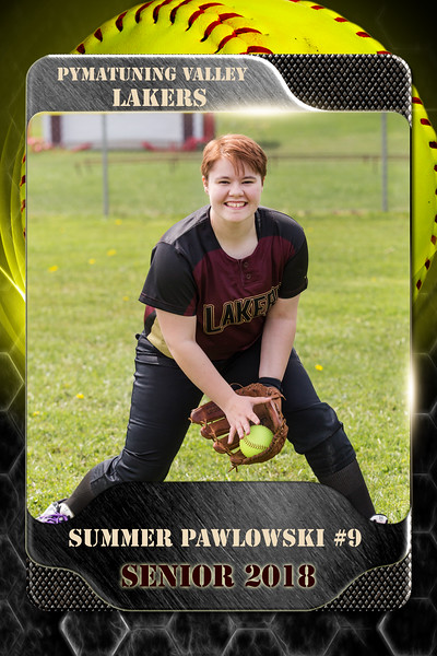 2x3 Banner Honeycomb Softball Pawlowski