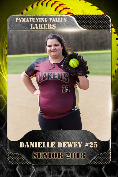 2x3 Banner Honeycomb Softball Dewey