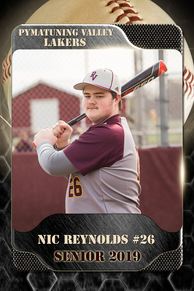 2x3 Banner Baseball Reynolds