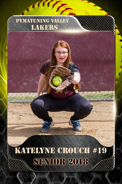 2x3 Banner Honeycomb Softball Crouch