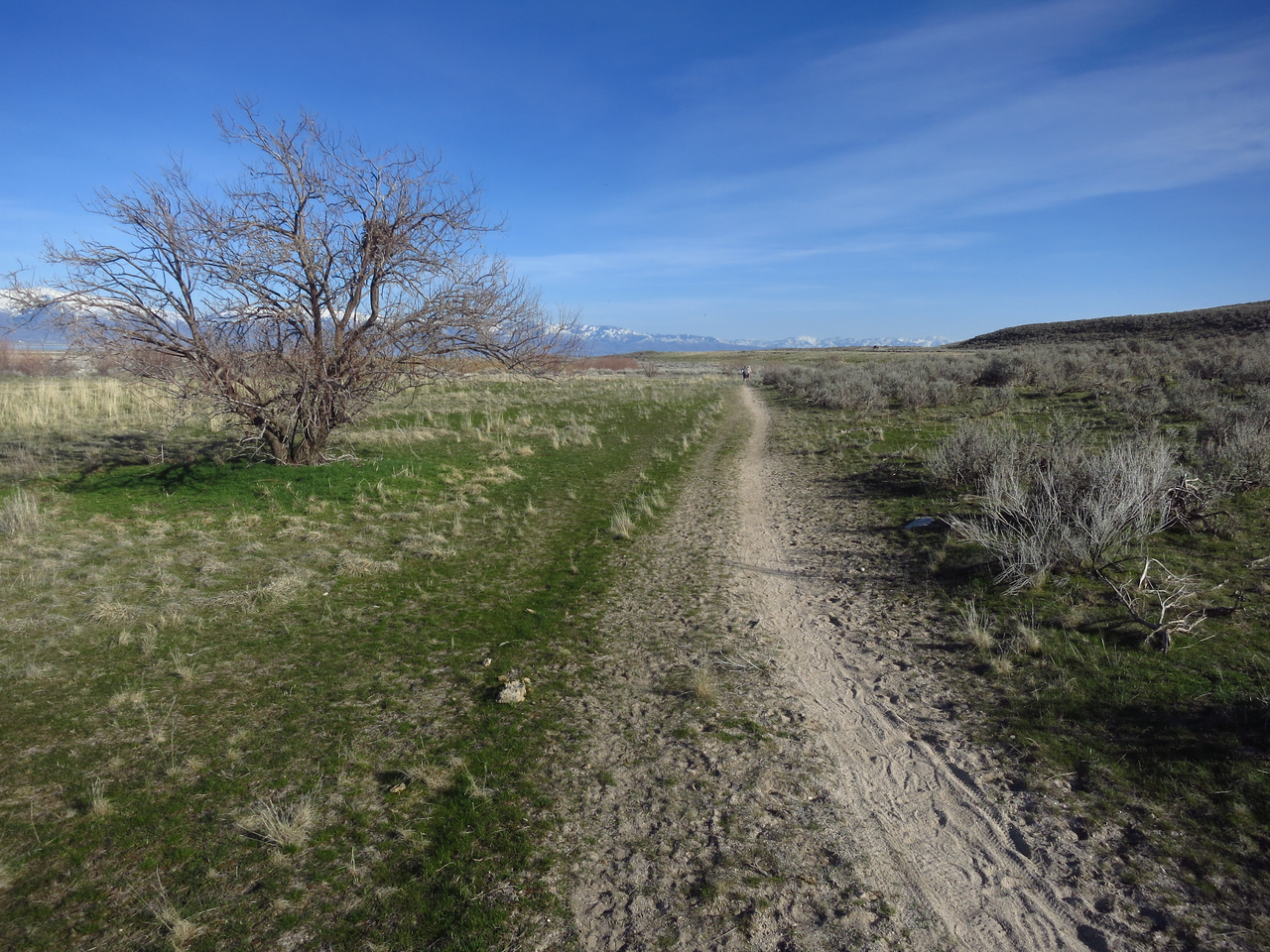Pretty typical stretch of path towards the Ranch.