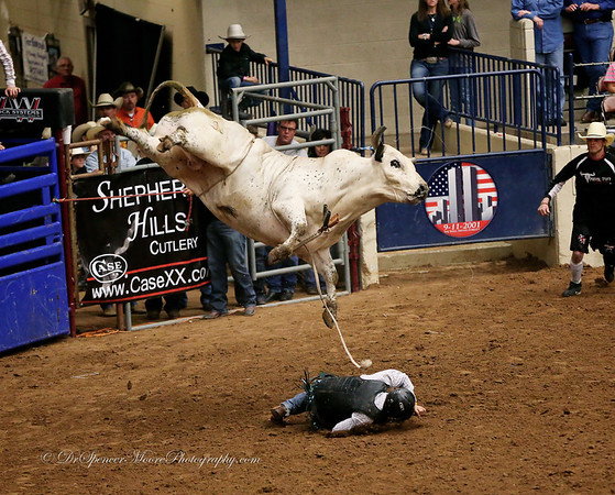 Bull Riding Waco HOT Coliseum 4-2013
