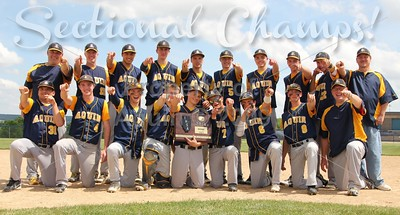 sectional champs web header