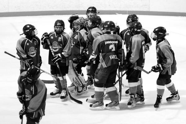 Burlington Lions Hockey Club
