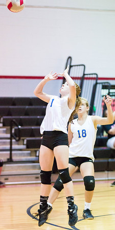 CNPS_Volleyball_01Sep2015_0017