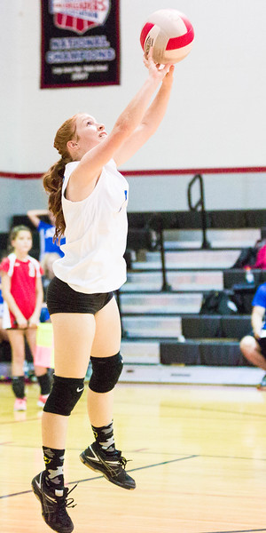 CNPS_Volleyball_01Sep2015_0006