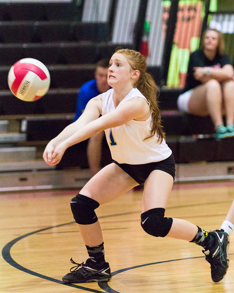 CNPS_Volleyball_01Sep2015_0012