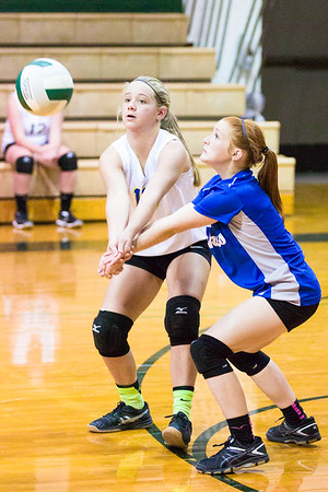 CNPS_Volleyball_08Sep2015_0006