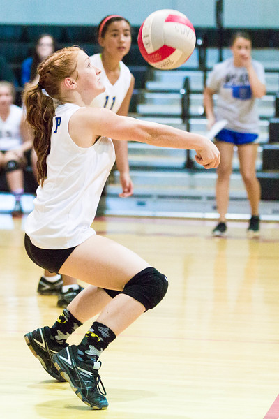 CNPS_Volleyball_01Sep2015_0008