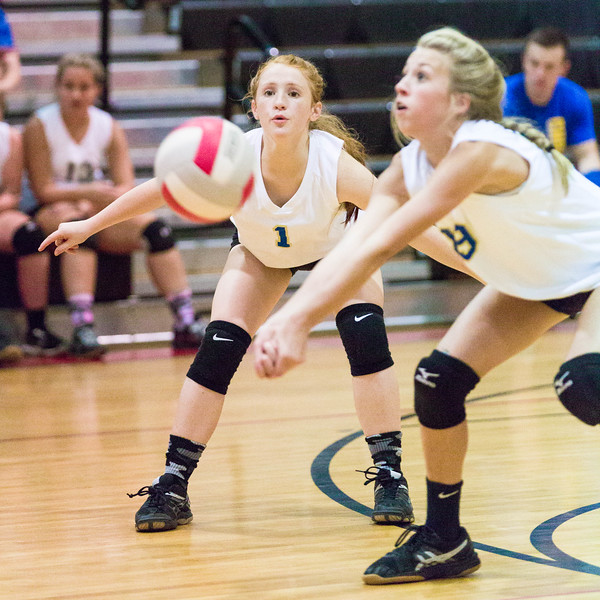 CNPS_Volleyball_01Sep2015_0011