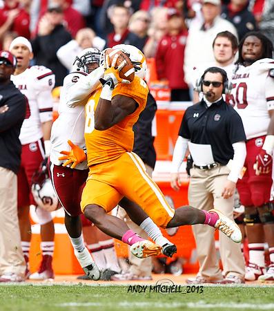 NCAA FOOTBALL: OCT 19 South Carolina at Tennessee