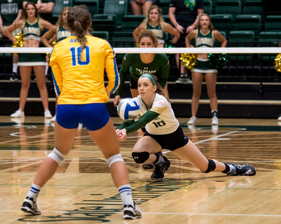 . Colorado State outside hitter Sanja Cizmic (10) gets low for a dig against San Jose State Saturday afternoon Sept. 24, 2016. Cizmic had 10 kills as the Rams downed the Spartans in straight sets, 3-0. (Photo by Michael Brian/Loveland Reporter-Herald)