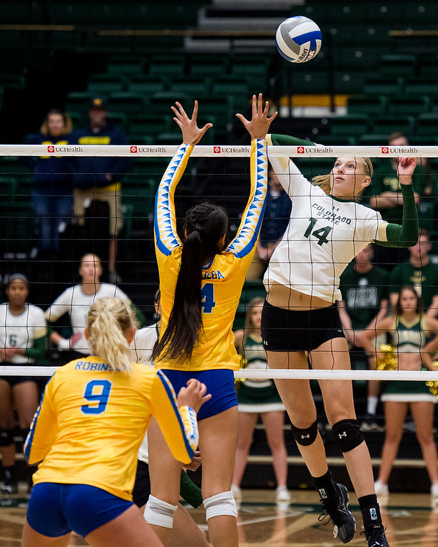 . Colorado State middle blocker Alexandra Poletto (14) rises up for a shot against San Jose State Saturday afternoon Sept. 24, 2016. The Rams beat the Spartans, 3-0. (Photo by Michael Brian/Loveland Reporter-Herald)