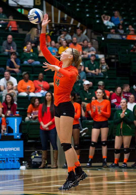 . Colorado State\'s Alexandra Poletto (14) serves against Utah State Saturday afternoon Oct., 29, 2016 at Moby Arena in Fort Collins. The Rams beat the Aggies in straight sets, 3-0. (Photo by Michael Brian/Loveland Reporter-Herald)