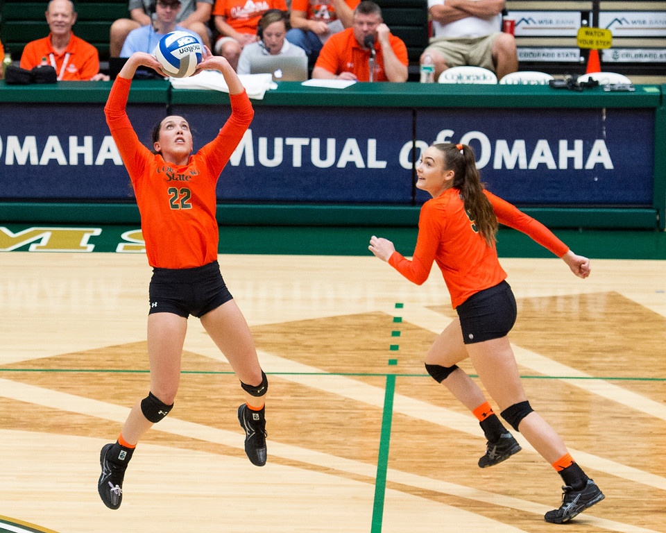 . Colorado State setter Katie Oleksak (22) focuses on the assist for teammate Paulina Hougaard-Jensen (9) against Utah State Saturday afternoon Oct., 29, 2016 at Moby Arena in Fort Collins. The Rams beat the Aggies in straight sets, 3-0. (Photo by Michael Brian/Loveland Reporter-Herald)
