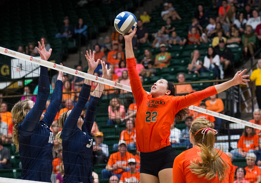 . Colorado State freshman Katie Oleksak (22) gets up to shoot the ball over the Utah State defense Saturday afternoon Oct., 29, 2016 at Moby Arena in Fort Collins. The Rams beat the Aggies in straight sets, 3-0. (Photo by Michael Brian/Loveland Reporter-Herald)