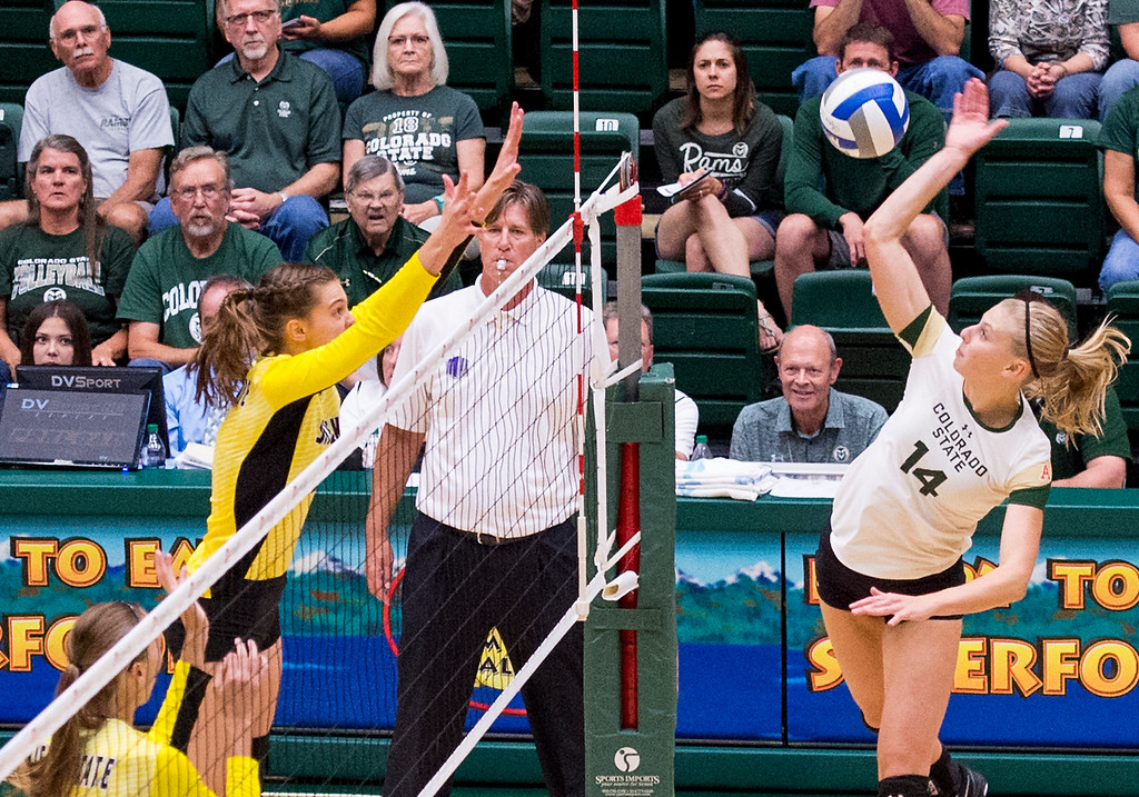 . Rams middle blocker Alexandra Poletto (14) drives a shot into the Wichita State defense Thursday evening Sept. 8, 2016 at Moby Arena in Fort Collins. (Photo by Michael Brian/Loveland Reporter-Herald)