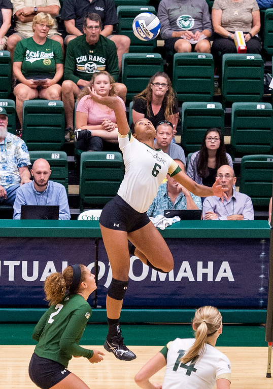 . Rams\' outside hitter Jasmine Hanna (6) lines up a shot against Wichita State Thursday evening Sept. 8, 2016 at Moby Arena in Fort Collins. (Photo by Michael Brian/Loveland Reporter-Herald)