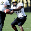FOOTBALL<br /> Tailback Brian Lockridge makes a catch during practice Tuesday.<br /> Photo by Marty Caivano/Camera/March 30, 2010