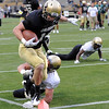 "Justin Gorman scores on a running play during the scrimmage on Saturday.<br /> For more photos of the game, go to  <a href=""http://www.dailycamera.com"">http://www.dailycamera.com</a><br /> Cliff Grassmick / April 14, 2012"