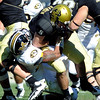 CU QB Tyler Hansen is sacked by Brian Coulter of Missouri. It was one of 8 sacks given up by the Buffs.<br /> Cliff Grassmick / October 31, 2009