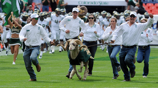 "Here comes Cam the ram in Sports Authority Field.<br /> For more photos of the CU game, go to  <a href=""http://www.dailycamera.com"">http://www.dailycamera.com</a>.<br />  Cliff Grassmick / September 17, 2011"