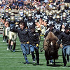 "Here comes Ralphie! Coach Jon Embree is on the left.<br /> For more photos of the CU game, go to  <a href=""http://www.dailycamera.com"">http://www.dailycamera.com</a>.<br /> Cliff Grassmick / September 10, 2011"