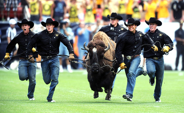 "Ralphie the buffalo runs on to Sports Authority Field for the CSU game.<br /> For more photos of the game, go to  <a href=""http://www.dailycamera.com"">http://www.dailycamera.com</a>.<br /> Cliff Grassmick / September 1, 2012"