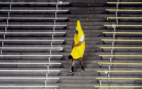 """The Banana Man was on the prowl at the CU Cal volleyball game.<br /> For more photos of the game, go to  <a href=""""http://www.dailycamera.com"""">http://www.dailycamera.com</a><br /> Cliff Grassmick / September 22, 2012"""
