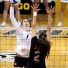 """University of Colorado's Kelsey English goes for a kill on Saturday, Sept. 24, during a volleyball game against the Oregon State Beavers at the Coors Event Center on the CU campus in Boulder. For more photos of the game go to  <a href=""""http://www.dailycamera.com"""">http://www.dailycamera.com</a><br /> Jeremy Papasso/ Camera"""