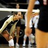 """University of Colorado's Megan Beckwith waits for the serve on Saturday, Sept. 24, during a volleyball game against the Oregon State Beavers at the Coors Event Center on the CU campus in Boulder. For more photos of the game go to  <a href=""""http://www.dailycamera.com"""">http://www.dailycamera.com</a><br /> Jeremy Papasso/ Camera"""