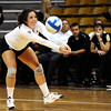 """University of Colorado's Elysse Richardson saves the ball on Saturday, Sept. 24, during a volleyball game against the Oregon State Beavers at the Coors Event Center on the CU campus in Boulder. For more photos of the game go to  <a href=""""http://www.dailycamera.com"""">http://www.dailycamera.com</a><br /> Jeremy Papasso/ Camera"""