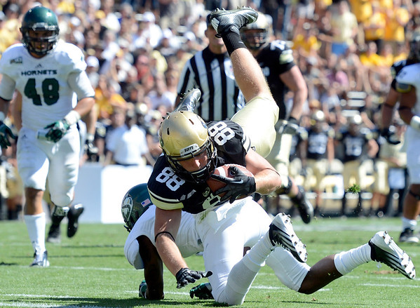 """University of Colorado's Kyle Slavin dives into the end zone for a touchdown during a game against Sacramento State on Saturday, Sept. 8, at Folsom Field in Boulder. For more photos of the game go to  <a href=""""http://www.dailycamera.com"""">http://www.dailycamera.com</a><br /> Jeremy Papasso/ Camera"""