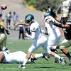 "Josh Tupou, right, of CU, pressures QB  Garrett Safron of Sacramento State.<br /> For more photos of the game, got o  <a href=""http://www.dailycamera.com"">http://www.dailycamera.com</a>.<br /> Cliff Grassmick  / September 8, 2012"