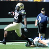 "Christian Powell of CU scores his first TD as a Buffalo against Sacramento State.<br /> For more photos of the game, got o  <a href=""http://www.dailycamera.com"">http://www.dailycamera.com</a>.<br /> Cliff Grassmick  / September 8, 2012"