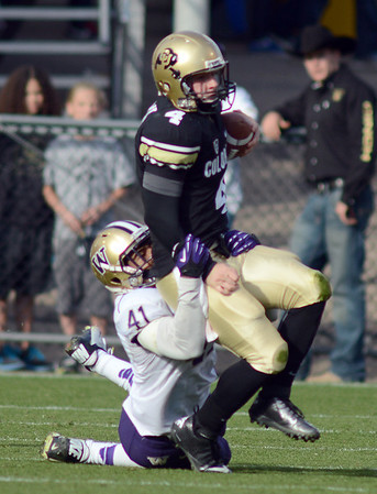 """CU QB Jordan Webb is sacked by Travis Feeney of Washington in the second half.<br /> For more photos of the CU game, go to  <a href=""""http://www.dailycamera.com"""">http://www.dailycamera.com</a><br /> Cliff Grassmick / November 17, 2012"""